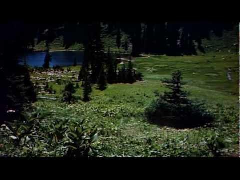 Lassie Come Home 1943 Trailer