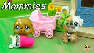 The Mommies series is back! Beverly and Vern are leaving the hospital with their newborn baby puppy when they get a surprise visit from Lisa, Lilly and Mattie. Here come the grandparents! Enjoy this video cookie fans!FREE Subscription Never miss a video!  Click here : http://bit.ly/1RYkDF6Watch More Cookie Swirl C  Toy Videos from Playlist:Paw Patrol  Imagine Rainbow Ink Book with Surprise Color Pictures Cookieswirlc Video https://youtu.be/kB6_uu2i3pwPainting A Dog Head - DIY Paw Patrol Marshall Pup + Cute Food Suncatcher - Craft Video https://youtu.be/hGUPqceAwcoMLP Use Magic To Fix Destroyed Playmobil Farm -  My Little Pony Toy Play Video https://youtu.be/7apAL59t4MUMy Little Pony Princess Cadance, Shining Armor , Baby Flurry Heart Birthday + Surprise Blind Bags  https://youtu.be/KitQrnHHFwA My Little Pony Twisty Twirly Wax Hair Style with Trolls Poppy & Branch - Toy Video  https://youtu.be/yZVtMGn1jRA◕‿◕Who Is Cookieswirlc - a unique channel bursting with fun, positive, happy energy featuring popular videos on Disney Frozen, Princesses, Littlest Pet Shop LPS, Shopkins, mermaids, My Little Pony MLP, LOL Surprise baby dolls, Lego, Barbie dolls, Play Doh, and much muchy more!!! Everything form stories, series, movies, playset toy reviews, hauls, mystery surprise blind bag openings, and DIY do it yourself fun crafts!www.cookieswirlc.com◕‿◕You rock cookie fans! I'll see you in my next video! - Cookie Swirl C