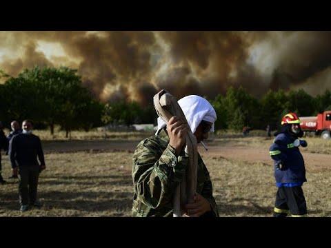 Kryoneri bei Athen: Anwohner kämpfen gegen Waldbrand