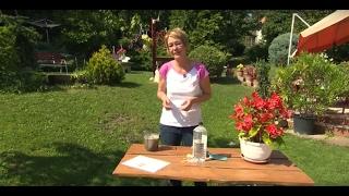 Savanyú és meszes talaj, pH érték mérése - Kertbarátok - Kertészeti TV - műsor