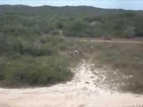 trilha em pium 2