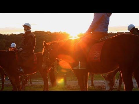 Horseback Winery Tour, Mornington Peninsula Melbourne Australia