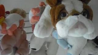 Bichos de Pelúcia e Bonecas, antes e depois da Restauração