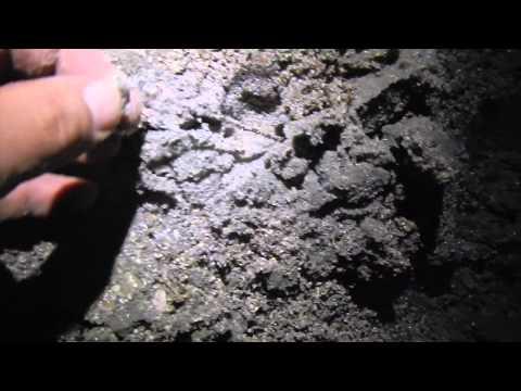 S3 Ep24: South Carolina Beach Metal Detecting Edisto & Isle of Palms