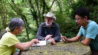 探索卷柏植物之單一巨大葉綠體