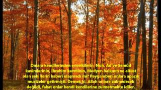 TEVBE-(TEVBE)-SURESİ-Ebubekir Şatiri (Abu Bakr Al Shatri)