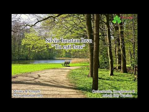 Video Silviu Ionatan Iovu