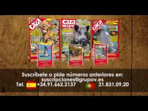 Caça e Cães de Caça, Federcaza & Caza Mayor Agosto 2017