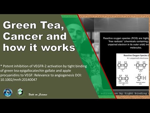 Green Tea, Cancer and how it works