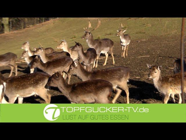 Marinierter Hirschbraten in Wacholder-Rotweinsoße   Wildrezept    Topfgucker-TV
