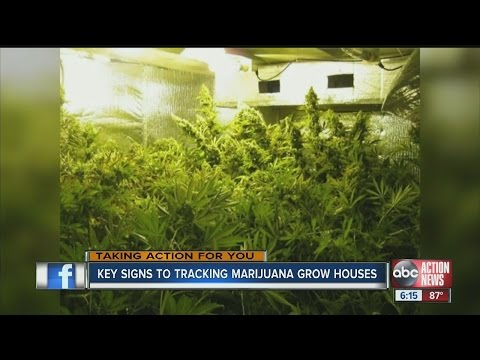 Key signs to tracking marijuana grow houses