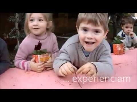 Tempo e Espaço de Ser Criança