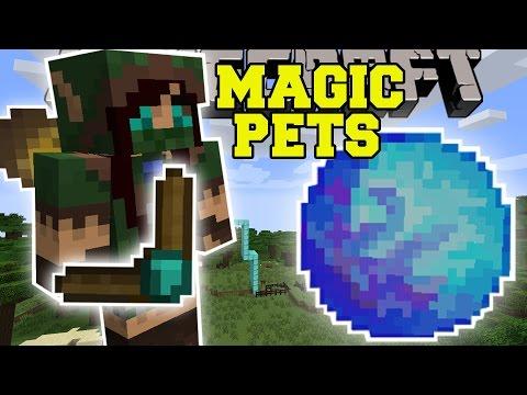 Minecraft Magic Pets Summon