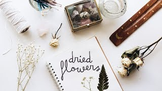 how to dry & preserve flowers