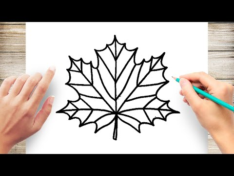 How to Draw Maple Leaf Easy