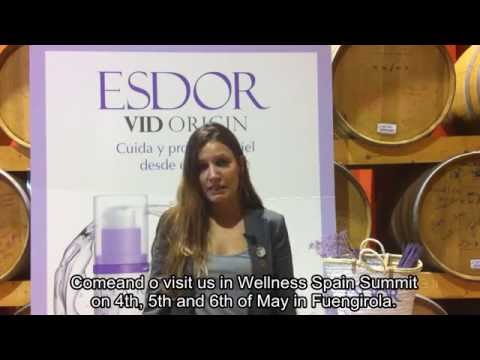 WELLNESS SPAIN SUMMIT 2014