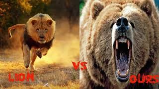 Video 10 Combats d'Animaux sauvages les Plus Impressionnants en Vidéo! Les Combats à Mort entre Animaux MP3, 3GP, MP4, WEBM, AVI, FLV November 2017