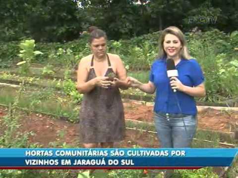 Hortas comunitárias são cultivadas por vizinhos em Jaraguá do Sul