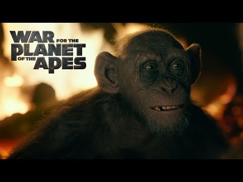 War for the Planet of the Apes (Clip 'Meeting Bad Ape')