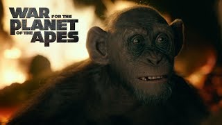 VIDEO: WAR FOR THE PLANET OF THE APES – Meeting Bad Ape Trailer