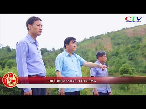 Tìm hiểu một số cây trồng dưới tán rừng tự nhiên ở Hướng Hóa