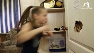 Dziewczynka wyprowadza ciosy z niezwykłą siłą i prędkością!