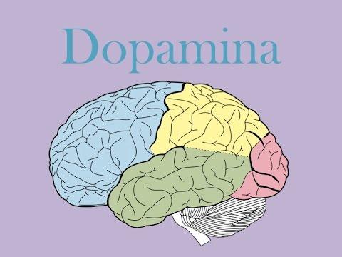 che cos'è la dopamina? scoprilo qui!