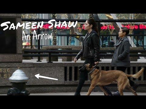 Sameen Shaw (POI) || An Arrow