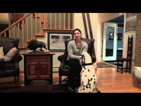 ViSalus Body By Vi Challenge – Hypothyroidism Testimony – 90 Day Challenge – The Challenge Buffalo