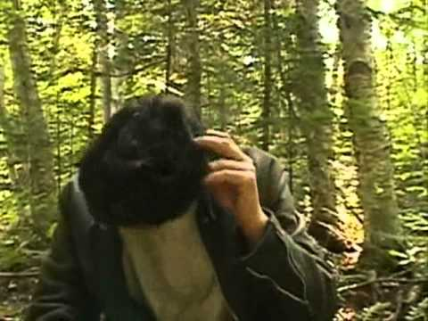 Kenny vs Spenny: Who Can Survive in the Woods Longest: Kenny and Spenny Fight