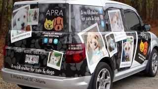 Atlanta Pet Rescue and Adoption
