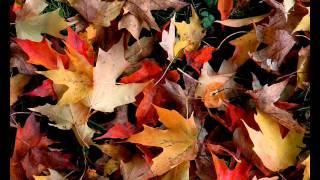 Genesis - Evidence of Autumn