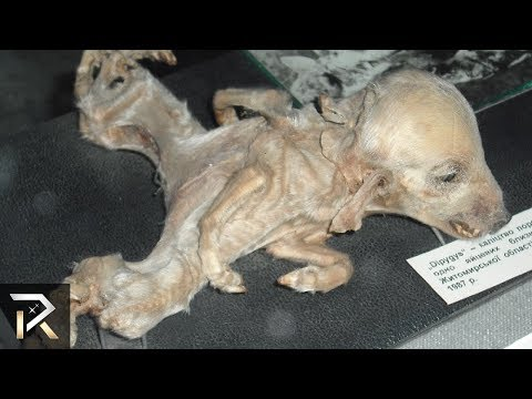 10 CREEPIEST Creatures Discovered After Radioactive Events