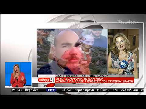 Προφυλακίστηκε  ο δράστης της άγριας δολοφονίας της Σούζαν Ίτον | 19/07/2019 | ΕΡΤ