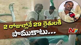 29 Farmers Injured With Snake Bite in Avanigadda | Krishna District