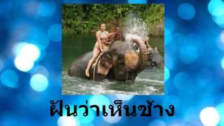 ฝันเห็นช้าง หรือได้ขี่ช้าง หรือได้ลูบคลำตัวช้าง ทำนายว่าจะมีโชคดีในหน้าทีการงาน มีโชคจากการเสี่ยง