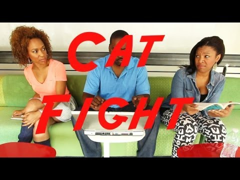 Cat Fight ! 😂COMEDY😂(David Spates)