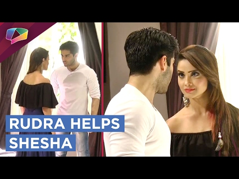 Rudra And Shesha Plan Against Shivangi   Naagin 2