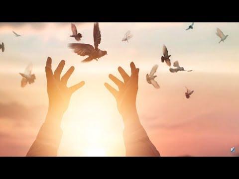 «Свет православия». 03.02.19. 723 выпуск.