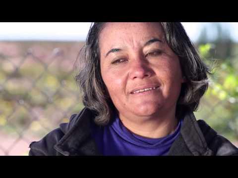 Video Gestión 2013