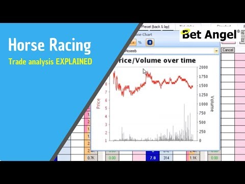 Horse Racing – Trade Analysis