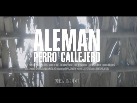 Alemán _ Perro Callejero