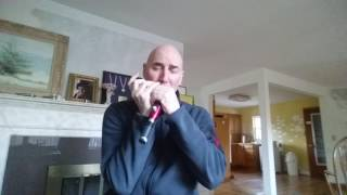 Chromatic Harmonica Tutorial & Review Videos