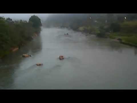 Pedras Grandes - Travessia Ponte Arame Rio Tubarão by José Carminatti