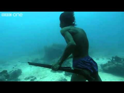 Under Water Hunting Without Breathing
