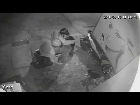 Bất ngờ bị 2 đối tượng dùng thòng lọng cướp chó, thanh niên cố giữ lại bị kéo lê hàng chục mét trên