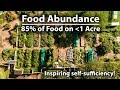 Download Lagu Growing 85% of Their Food on UNDER 1 Acre! Mp3 Free
