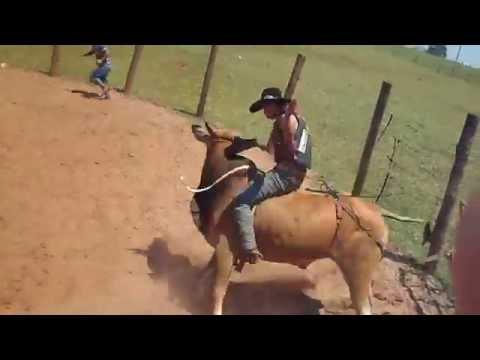 treino em montarias em touros