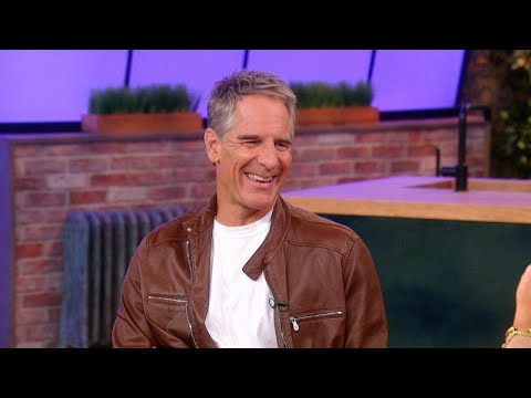 NCIS: New Orleans Star Scott Bakula On Working With His Wife