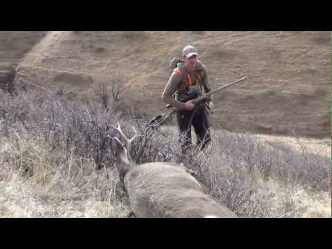 Mule Deer Buck Hunt in Montana